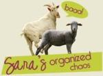Sara's Organized Chaos